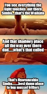 Lion King Shadowy Place Meme Generator - meme creator you see everything the light touches out there simba