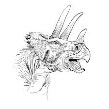 triceratops dinosaur sketch vector illustration royalty free stock
