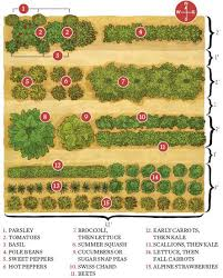 Gardening Layout How To Start A Garden Save Money And Eat Fresh Healthy Living