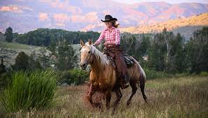 dude ranches cattle drive horseback riding vacation