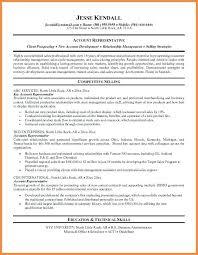 Career Summary Resume Example Skills Summary For Resume Cbshow Co