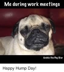 Happy Hump Day Memes - happy hump day meme