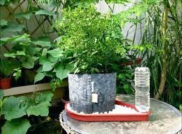large self watering planters u2013 affordinsurrates com