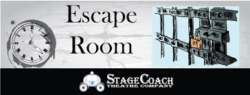 adults stagecoach theatre company