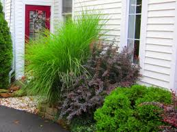 Front Of House Landscaping Ideas by How To Design A Great Yard With Landscape Plants Diy