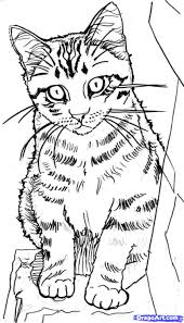 sitting pretty sweet warrior she cat warrior coloring pages