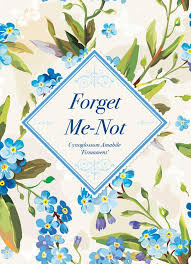 forget me not seed packets vintage gift forget me not forget me not seed favor bentley seeds