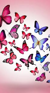 imagenes gratis animadas para celular lindas fotos de fondo de pantalla para celular gratis imagenes