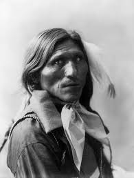 goose face dakota sioux by heyn photo ca 1900 sioux