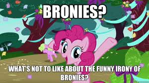 Mlp Funny Meme - bronies what s not to like about the funny irony of bronies