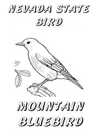 state bird coloring page free oklahoma state bird coloring pages