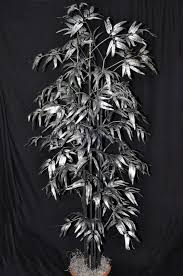 buy bamboo silver 6 silk palm tree custom made on