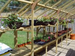Small Backyard Greenhouse by 114 Best Orchid Greenhouse Ideas Images On Pinterest Greenhouse