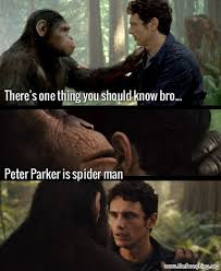 Movie Meme - movie memes peter parker is spider man meme spiderman54