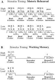 lobular patterns of cerebellar activation in verbal working memory