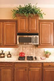 How To Decorate Your Kitchen by Best Kitchen Plants Plants For Kitchen To Decorate It Balcony