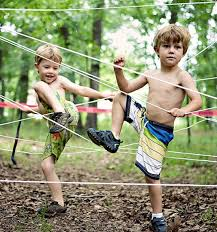Backyard Obstacle Course Ideas 32 Diy Backyard To Play For Adults