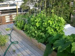 Small Urban Garden - small urban garden design idea 4 home ideas