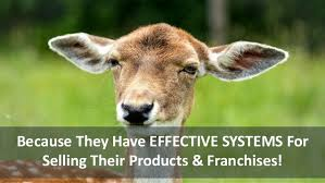Why And How To Use by Learn Why And How To Use The Power Lead System To Grow Your Business