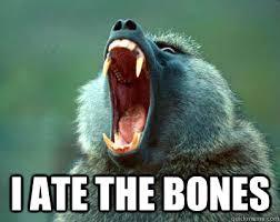 Baboon Meme - i ate the bones baboon memes quickmeme