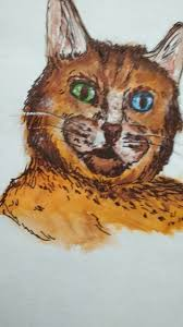 sketch cat u2014 steemit