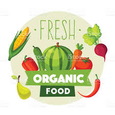 fresh organic food eco vegetables and fruits cartoon vector