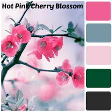 home decor fresh japanese cherry blossom home decor interior