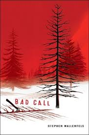 in the bad room with stephen bad call by stephen wallenfels bookishfirst the review room