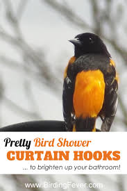Bird Shower Curtains Pretty Bird Shower Curtain Hooks U2022 Birding Fever