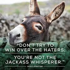 inspirational 28 donkey meme wallpaper site wallpaper site