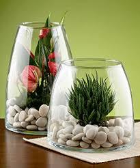 Flowers For Home Decor Glass Plant Terrarium Ideas