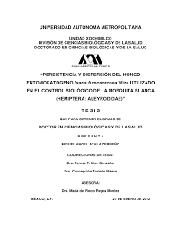 persistencia y dispersión del hongo entomopatógeno isaria