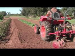 hilling potatoes growing a vegetable garden youtube
