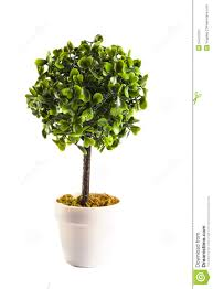 miniature artificial tree stock image image of decoration 54410187