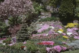 How To Landscape A Sloped Backyard - sloped yard u0026 rocky landscaping ideas home guides sf gate