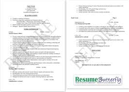 resume business owner experience resume for a business owner