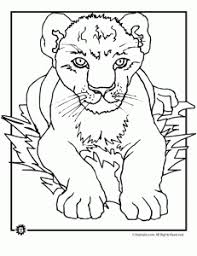 lion coloring pages animal jr