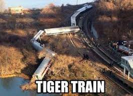 Funny Tiger Memes - sorry tiger fans but these are pretty funny best richmond memes