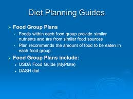 chapter 2 planning a healthy diet ppt video online download