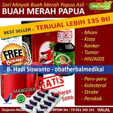 buah merah papua untuk obat herbal miom kista tumor aids hiv