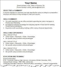 Generic Resume Objective Examples Download Generic Resume Haadyaooverbayresort Com