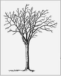 tree template printable