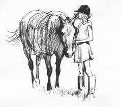 vintage horse pony pencil sketch vintage childrens