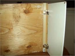 Closet Door Hinges by Awesome Best Cabinet Door Hinges Fzhld Net