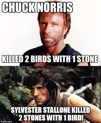 Stallone Meme - sylvester wins imgflip