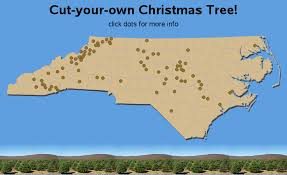 cut your own christmas tree farms in north carolina nc sas