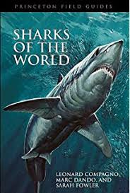 the biology of sharks and rays a peter klimley steven oerding