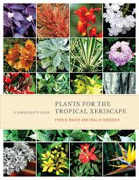 Feng Shui Guide by Feng Shui Gardening With Xeriscape Plants U2013 Clear Englebert U0027s Feng