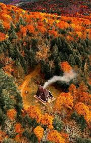a frame nestled in autumn autumn pinterest autumn