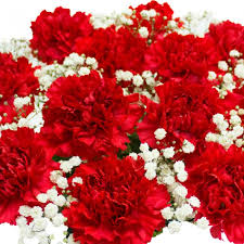 Red Carnations Red Carnations Bouquet U0026 Chocolates